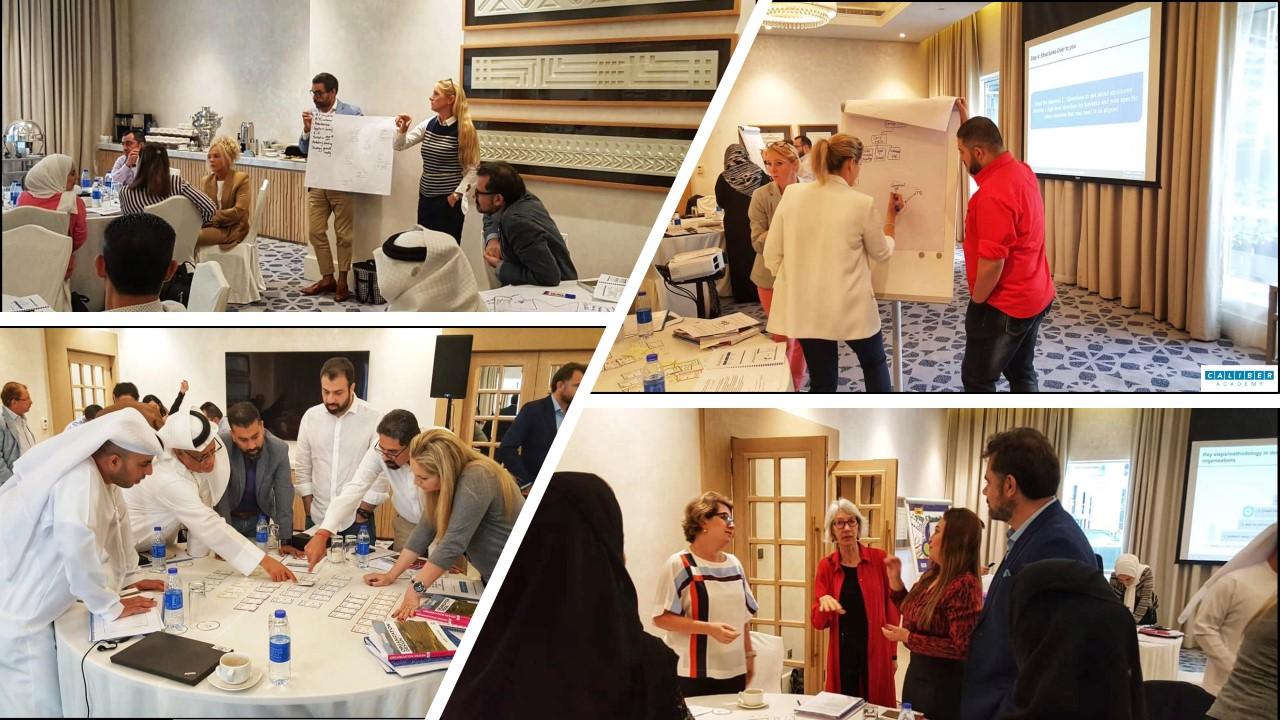 Organization Design Master Class, Dubai 2018